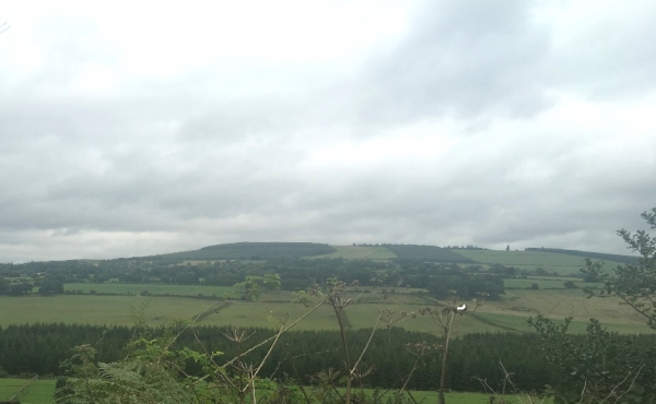 Kilpipe, Aughrim, Co Wicklow
